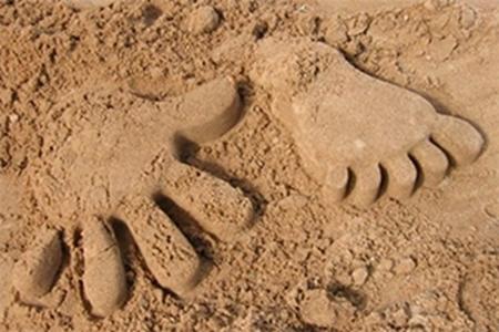 Изображение для категории Живой и кинетический песок