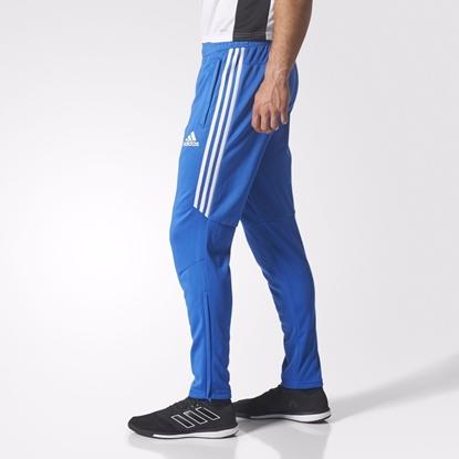 Мужские спортивные штаны Adidas TIRO 17 TRG PNT, синий/бел.