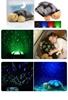 """Picture of Ночник-проектор звездного неба """"Музыкальная черепаха"""""""