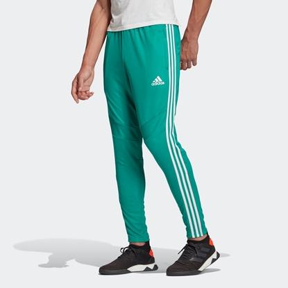 Мужские спортивные штаны Adidas Tiro 19 Training Pants, Glory Green / White