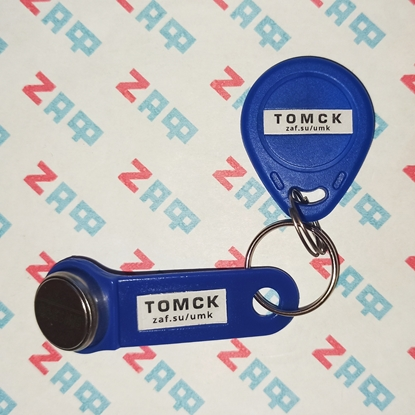 Мастер-ключи для домофонов города Томска (2 шт, TM + RFID)